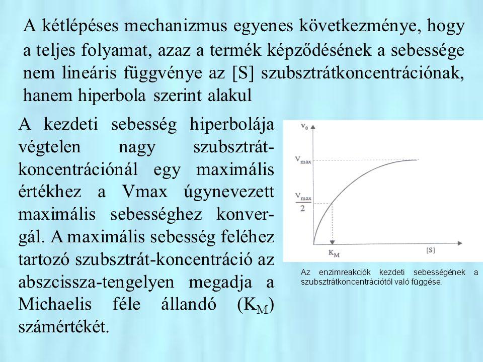 A kétlépéses mechanizmus egyenes következménye, hogy a teljes folyamat, azaz a termék képződésének a sebessége nem lineáris függvénye az [S] szubsztrátkoncentrációnak, hanem hiperbola szerint alakul
